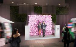 [にぎわいイベント]新宿駅小田急グループの各商業施設エリアを一つのまちと見立て光のイベント開催