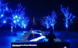 [エリマネ活動]品川シーズンテラスでハンドベルの音色に呼応するインタラクティブイルミネーション開催