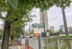 [エリマネ活動]街に対する地域住民の愛着や誇りを持つキッカケとなることを願い始まった、目黒川みんなのイルミネーション