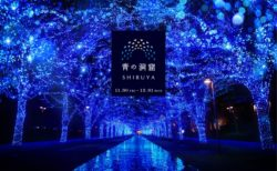 """[にぎわいイベント]光が動く調光・音の演出が追加で""""青の洞窟 SHIBUYA""""がパワーアップ!渋谷公園通り~代々木公園ケヤキ並木で開催"""