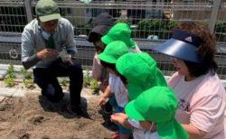 マンション施設を幼児、学生、企業、地域住民とシェアリング!「屋上菜園×幼児教室」「食事付き学生マンション×就活」「高齢者向け住宅×地域交流」新たな価値を生み出すジェイ・エス・ビーの取組みを紹介