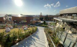 エリアとコンセプトが拡張され、まちと一体になった、南町田グランベリーパークがリニューアルオープン